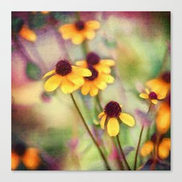 Still Bolder Canvas Print