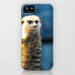 zoo mongoose meerkat cute watch iPhone Case