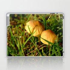 Two Toadstools Laptop & iPad Skin