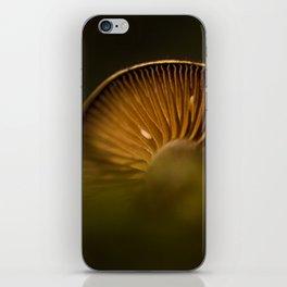Secrets of the underbrush iPhone Skin