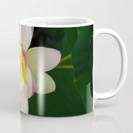 Lotus Blossom in Full Bloom Coffee Mug