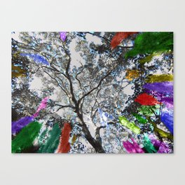 Colors in the Woods Canvas Print