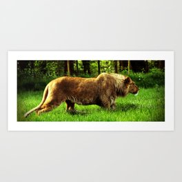 On the prowl.. Art Print