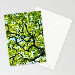 Sunny Spring Day Stationery Cards
