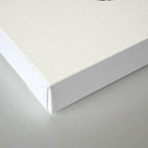 Resources Canvas Print