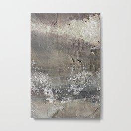 theclimb Metal Print