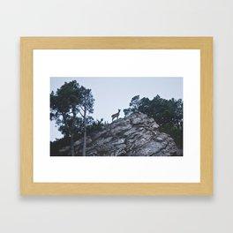 La cabra Framed Art Print