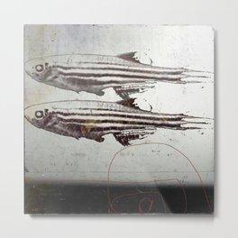 « des poissons » Metal Print
