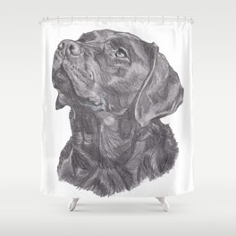 Gotta draw the LAB Shower Curtain