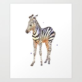 zebra, baby zebra, african wildlife, black and white, stripes, safari art Art Print
