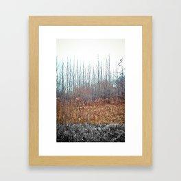 AT Framed Art Print