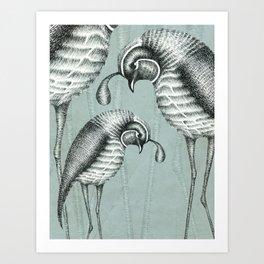 Quails I Art Print