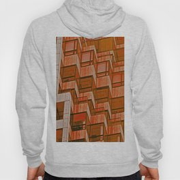 Architectural Abstract in Red Hoody