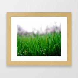 Bug's View Framed Art Print