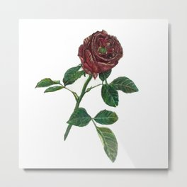 ROUGE ROSE Metal Print