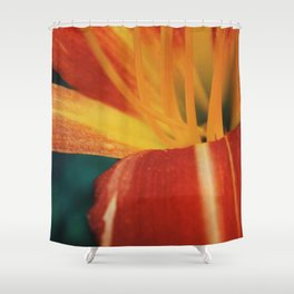 The Lily and The Ant Shower Curtain
