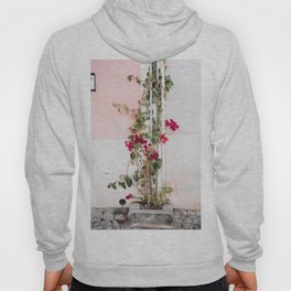 Ivy with Flowers on White & Pink Wall in Cascais, Portugal | Travel Photography | Hoody