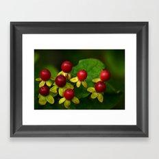 Berry Good! Framed Art Print
