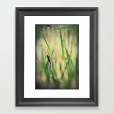 Getting ready to Rise and Shine Framed Art Print