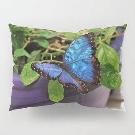 Love of Blue Pillow Sham