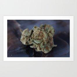 Deep Sleep Medicinal Medical Marijuana Art Print