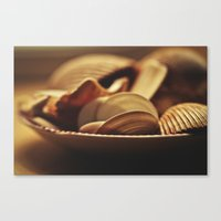 shells Canvas Prints featuring Shells by BURNEDINTOMYHE∆RT♥