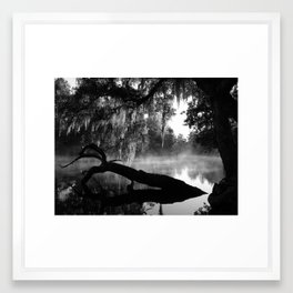 Coolness and Fog on the Withlacoochee River Framed Art Print