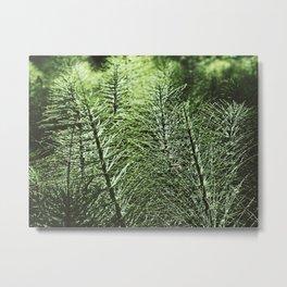 Sentinel Green Metal Print