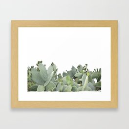 Cactus of Kefalonia Framed Art Print