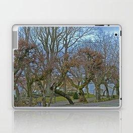 Castle garden Laupheim Laptop & iPad Skin