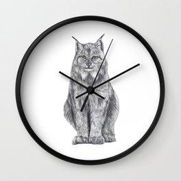Bobcat from my area Wall Clock