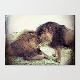Brothers - 1 Canvas Print