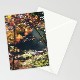 Autumn Window Stationery Cards