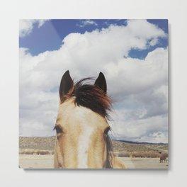 Cloudy Horse Head Metal Print