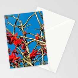 Tropical Flowering Coral Tree Branches Red Flowers Stationery Cards