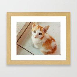 Tuku Framed Art Print