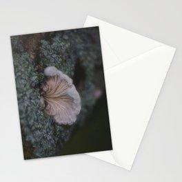 Spring Mushroom Stationery Cards