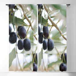 Olive twigs Blackout Curtain