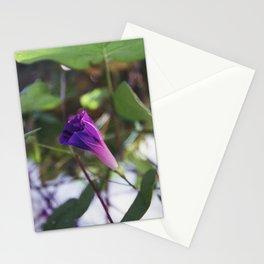 215//365 [v2] Stationery Cards