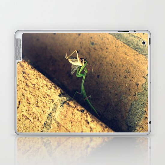 Sacrificial Grasshopper Laptop & iPad Skin