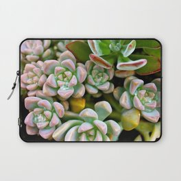 Dewy Delights Laptop Sleeve