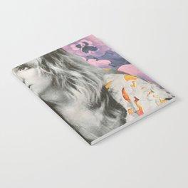Stevie Notebook