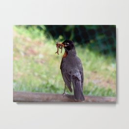 Mouthful of worms Metal Print