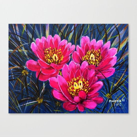 Cactus flowers ( Close up) Canvas Print