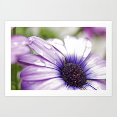 Purple Bliss Art Print