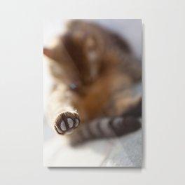 Speak to my paw Metal Print
