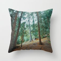 into the woods 01 Throw Pillow