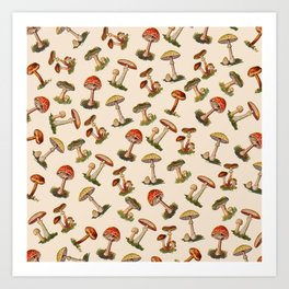 Magical Mushrooms Kunstdrucke