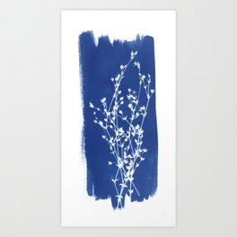 Herbal Sunprint #1 Art Print