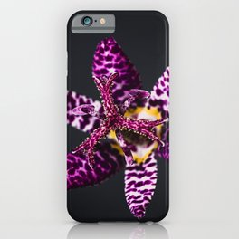 Japanese Toad Lily Flower iPhone Case